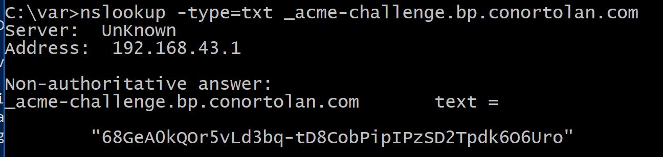 Verify DNS TXT record image