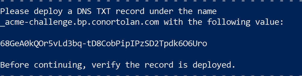 Certbot DNS challenge image